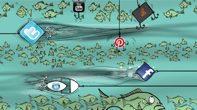 social-media-marketing-the-blue-whale-of-your-marketing-budget